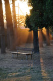 Bench at the sunset Royalty Free Stock Photos