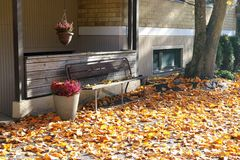 Bench surrounded by fallen leaves and flowers in baskets in the fall stock image
