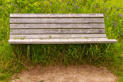 Bench in a tall grass Royalty Free Stock Images