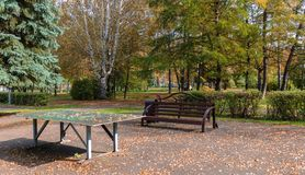 Tenis table and a bench with fallen leaves on them in the warm autumn in the park. A bench and a tennis table with fallen yellow foliage from the trees, in the Stock Photo