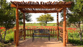 Bench in Texas Flower Garden. Bench in shade under canopy in Texas flower garden Royalty Free Stock Photo