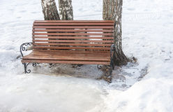 A bench to rest. Stock Photo