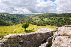 Bench Tor Dartmoor. The view from Bench Tor looking up the Dart Valley Dartmoor National Park Devon Uk Stock Image
