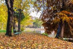 Bench toward the lake late autumn.Tree near the lake with heart. Graffiti stock image