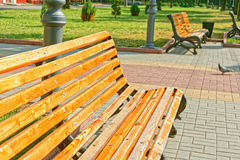 Bench in town square Royalty Free Stock Photo