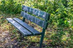 bench trä Arkivbilder