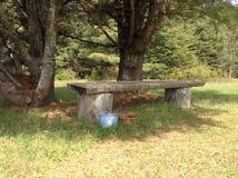 bench trä Arkivfoton