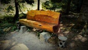 bench trä Royaltyfri Fotografi