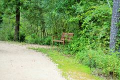 Bench on trail Royalty Free Stock Photos