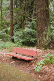 A bench on a trail. Portland Oregon. Stock Photo