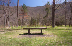Bench Of Tranquility Stock Images