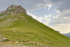 Bench for travelers in the Durmitor. Stock Photo