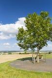 Bench And Tree, Germany Stock Photos