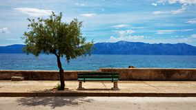 Bench, Tree, Sea, Coast, Beach Royalty Free Stock Photo