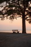 Bench and tree silhouette viewing to serene lake Stock Photo
