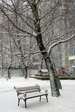 Bench and tree in the snow Stock Photos