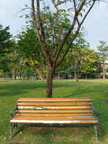 Bench and trees Stock Photography