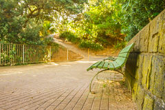Bench and trees in a park. Auckland, new zealand Royalty Free Stock Images