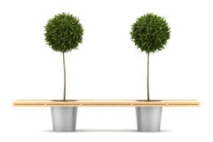 Bench with two potted orange trees isolated Royalty Free Stock Photos