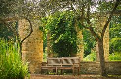 Bench Between the Two Trees Royalty Free Stock Photography