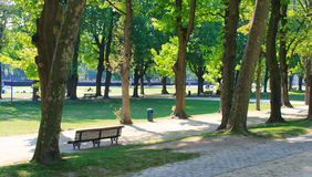Bench in un parco un giorno soleggiato Fotografie Stock