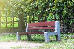 Bench un the park. In sunny day Stock Photo