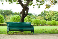Bench Under A Tree. Stock Photo