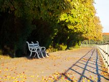 Bench under the chestnut trees. Lovely urban scenery in autumn. location Kyiv embankment in Uzhgorod stock image