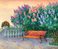 Bench under a flowering lilac Stock Photo