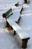 Bench under the snow. In the park royalty free stock photo