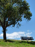 Bench under the tree. Bench in  the shade of the tree on the hill Royalty Free Stock Image