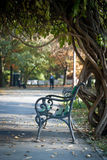 Bench under the tree. A park bench under the tree Royalty Free Stock Photos