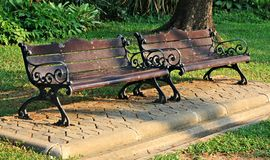 Bench under the tree in the Gardens Stock Photos