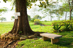Bench under a tree. Royalty Free Stock Photography