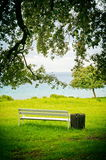 Bench under tree Royalty Free Stock Image