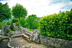 Bench under tree Stock Photography