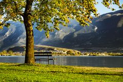 A bench under the tree next to the lake among the mountains in the sunrising light. stock photos