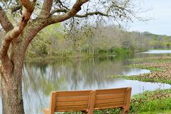 Bench under a tree overlooking a lake Stock Photo