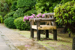 Bench under the tree in park Royalty Free Stock Photo
