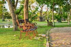Bench under a tree beside a park walkway Royalty Free Stock Images