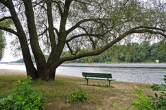 Bench under a tree by the river Stock Photos