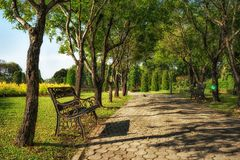 Bench under the tree in Suan Luang Rama 9 park Stock Photos