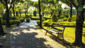 Bench under the tree in Suan Luang Rama 9 park Royalty Free Stock Images
