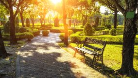 Bench under the tree in Suan Luang Rama 9 park Stock Image