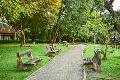Bench under a tree beside a walkway in park.  Stock Photography