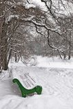 Bench under a tree in winter park Royalty Free Stock Photos