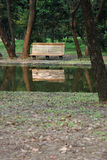 Bench under trees. Along the river Royalty Free Stock Photo