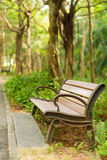 Bench under the trees Stock Photography