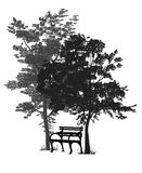 Bench under the trees. Silhouette of a bench in the park among the trees Royalty Free Stock Photography