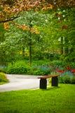Bench unter einem Baum mit Blumen in einem Park Lizenzfreies Stockbild